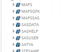 SAS Basics 236